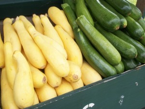 just picked summer squash and zucchini